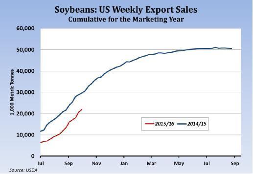 大豆:美国销售年度的每周出口销售累计